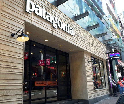Patagonia Ashley Road TST